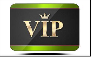 VIP v1.2 (300breit)