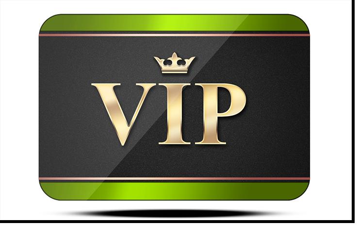 VIP v1.2 (740x463)